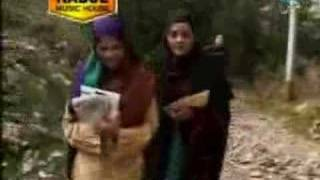 Pashto Music - Zeek Afridi- Naray Baran