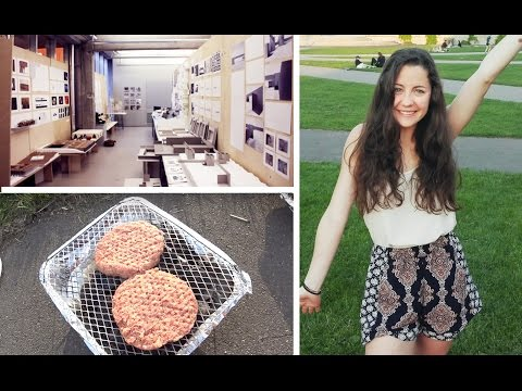 Architecture University and Picnic at the park | Vlog #3