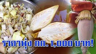 """ต่างชาติฮิต """"หัวปลีไทย"""" นิยมกินแทนเนื้อสัตว์ ราคาพุ่ง กก.ละ 1000 พอรู้ประโยชน์แล้วกระจ่างทันที!!"""