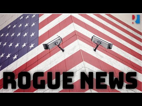 Rogue News: Interview: W - The Intelligence Insider
