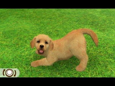 Nintendogs+Cats [Spécial Labrador retriever] - YouTube