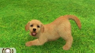 Nintendogs+cats [spécial Labrador Retriever]