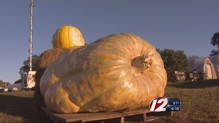 World Record Pumpkin Grown In RI