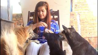 Lovely Smart Girl doing this with baby cute Dog