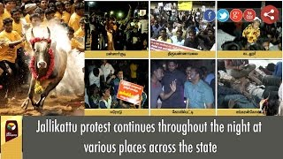 Jallikattu protest continues throughout the night at various places across the state
