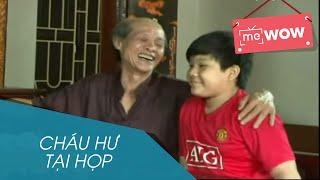 hai - chau hu tai hop - mewow