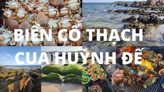Biển Cổ Thạch ĐẸP LẠ với Bãi đá bảy màu và rêu xanh - Chợ đêm hải sản CUA HUỲNH ĐẾ - Chùa Cổ Thạch