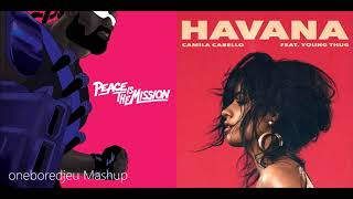 Lean On Havana - Major Lazer & DJ Snake vs. Camila Cabello feat. Young Thug (Mashup)