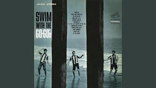 Sand Swimmer