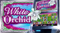 White Orchid® Video Slots by IGT - Game Play Video