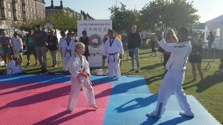 Nana Taekwondo Flæk bræt ☆☆☆