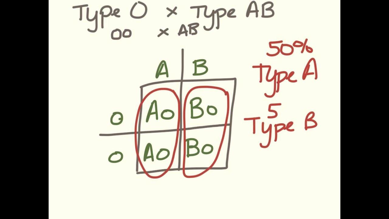 Freshman genetics. Blood type problems - YouTube