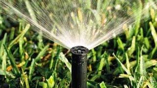 IoT - Tự động tưới nước trong vườn