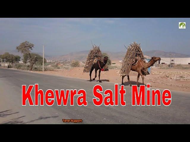 Khewra Salt Mines Trip Jhelum Pakistan | TravelerBase