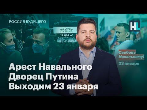 Арест Навального, дворец