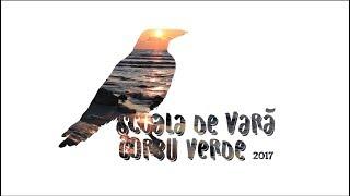 Video Corbu Verde 2017 - PinArt download MP3, 3GP, MP4, WEBM, AVI, FLV September 2017