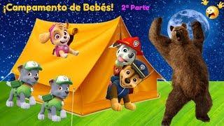 🐻¡UN OSO!🐻 Bebés de la Patrulla Canina van de acampada🌞Juguetes en español