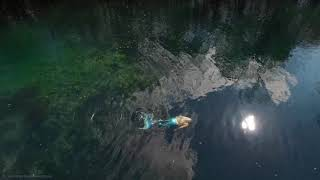 Aerial Footage Of Blue Tailed Mermaid Swimming