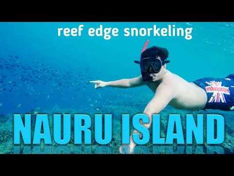 nauru island underwater beauty