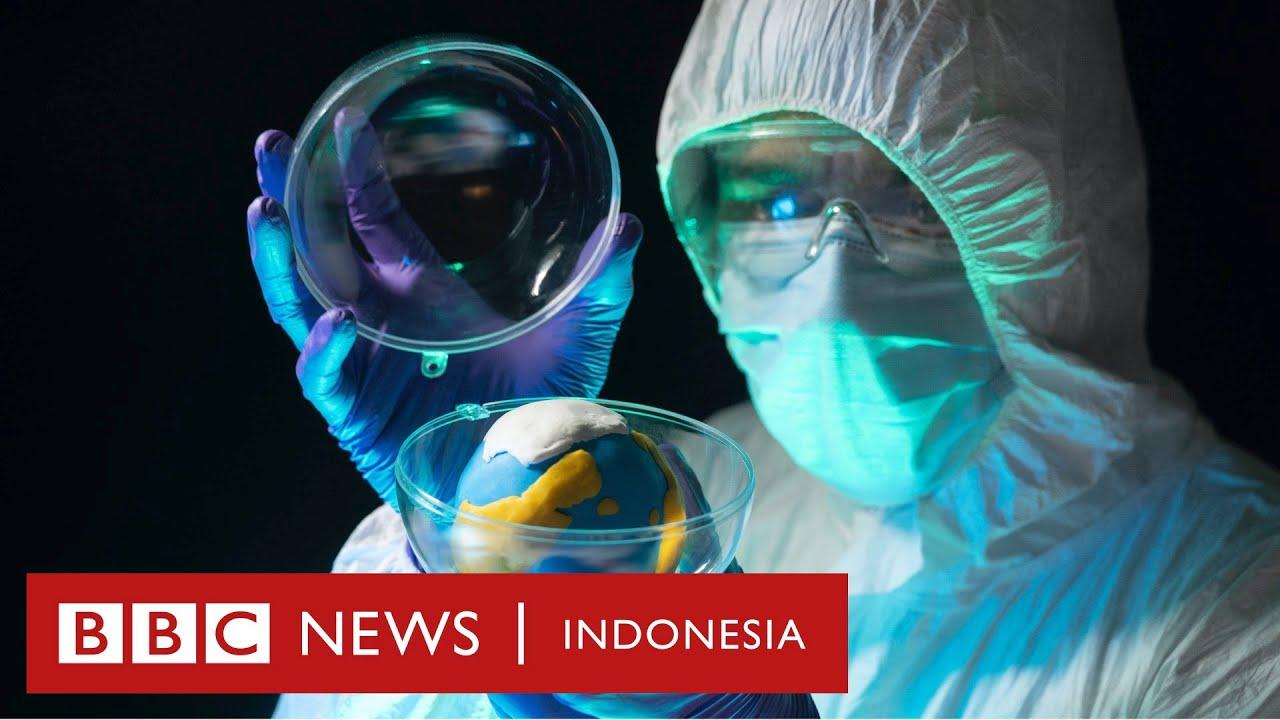 Makhluk lain yang bisa bertahan hidup di luar angkasa - CLICK | BBC News Indonesia