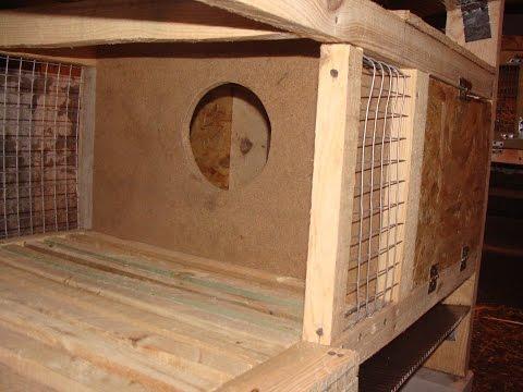 Маточники для кроликов своими руками видео 228
