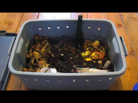 how to make vermicompost at home