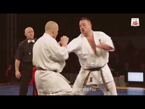 Victory Kyokushin Karate