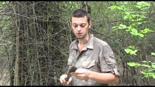 Outdoor Survival Staffel 7 Jungle Training vorab Folge 1