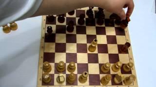 Шахматы для начинающих / часть2