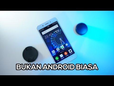 Review Vivo Y55 Indonesia - Kemampuan Merata