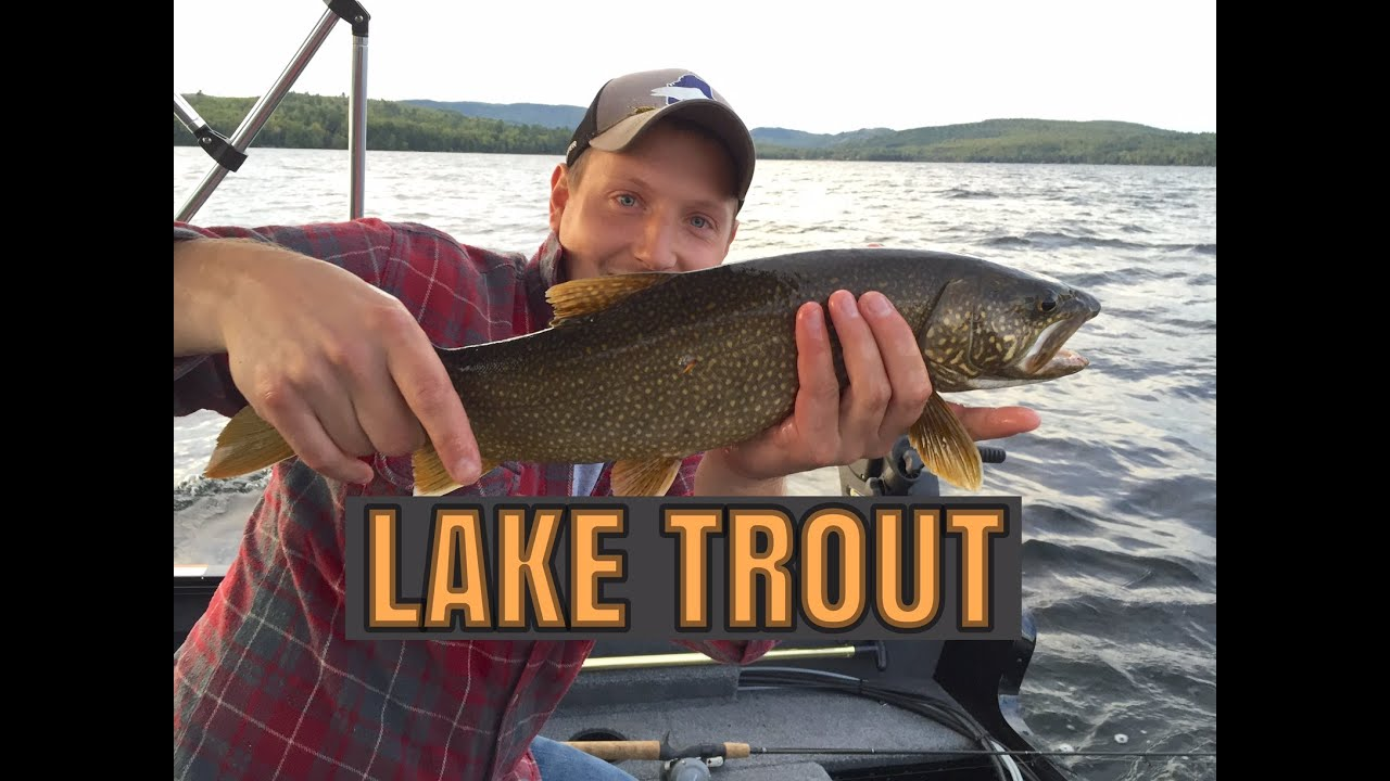 Trolling for lake trout early fall in maine youtube for Trout fishing near me
