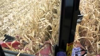 видео шина сеялка