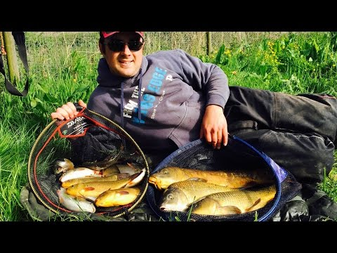 Float Fishing The Traditional Waggler - Fun Session!