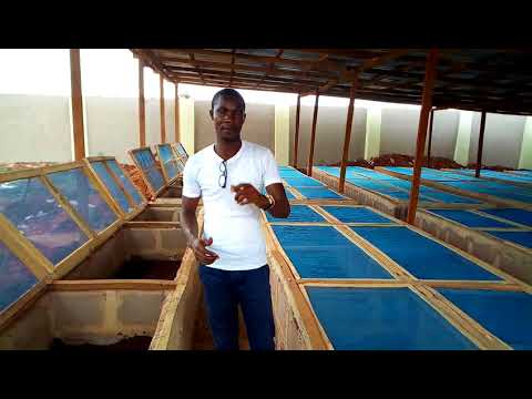 Snail farm construction in Benin (Esihor)