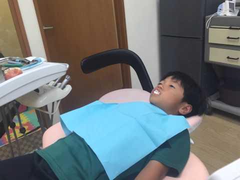 2015年8月13日ゆうちゃん過剰歯を抜きました