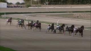 Vidéo de la course PMU PRIX BLACK CROM GS