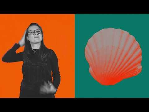 Fokko & Aafke Romeijn - Goeroe (Official Video)