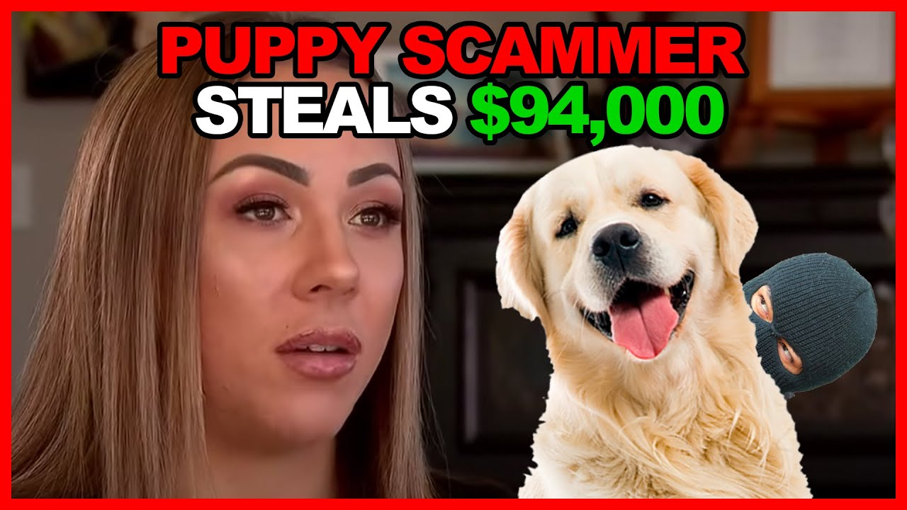 WARNING: $94,000 PUPPY SCAM - CAUGHT
