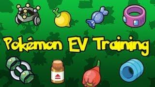 Pokemon Theory -  EV Training Explained