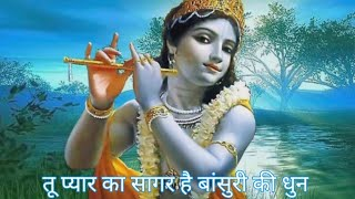 Tu pyar ka sagar hai flute cover of seema movie song