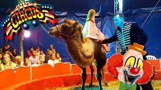 Цирк Шапито во Франции//Животные пони, лама, верблюд/Смешной клоун//Алис идет в цирк впервые в жизни