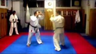kosmidis george dvd kyokushinkai  karate