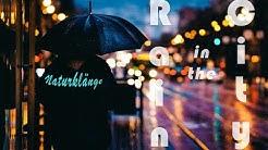 Naturklänge Regen in der Stadt - rain in the city
