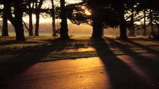 Shamanic Practitioners Course - Shamanism Ireland, Dunderry Park, Co Meath