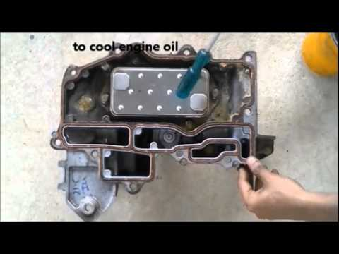 How engine oil cooler works. ✔