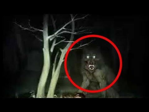 Top 10 Werewolf Caught On Camera & Spotted In Real Life
