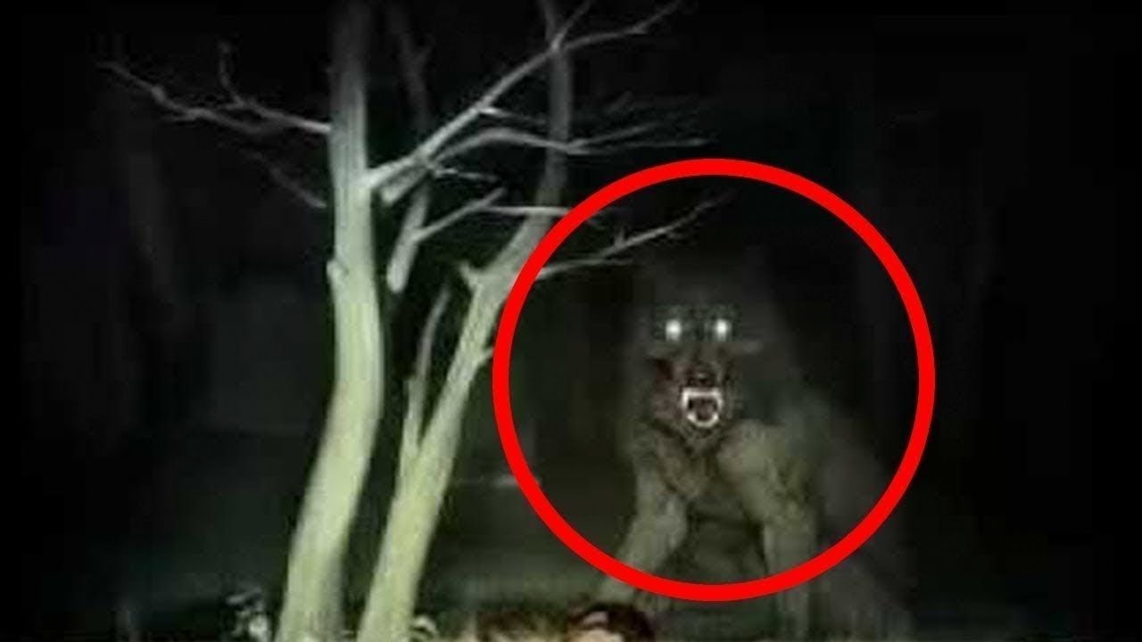 Download Top 10 Werewolf Caught On Camera & Spotted In Real Life