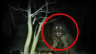 Top 10 Werewolf Caught On Camera & Spotted In Real Life - Unbelievable Mythical Creature Sightings