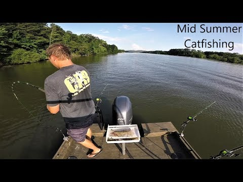 Mid Summer Catfishing