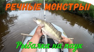 Речные монстры разорвали мне всю сетку Рыбалка на Сибирской реке Рыбалка на паук